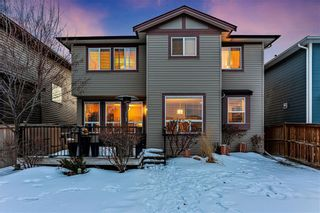 Photo 31: LUXSTONE in Airdrie: House for sale