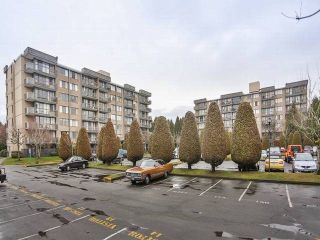 "Photo 2: 202 9300 PARKSVILLE Drive in Richmond: Boyd Park Condo for sale in ""MASTERS GREEN"" : MLS®# V1051132"