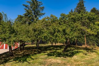Photo 46: 4978 Old West Saanich Rd in : SW Beaver Lake House for sale (Saanich West)  : MLS®# 852272