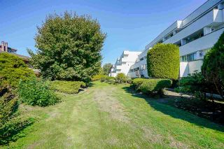 Photo 8: 205 9151 NO. 5 Road in Richmond: Ironwood Condo for sale : MLS®# R2541005