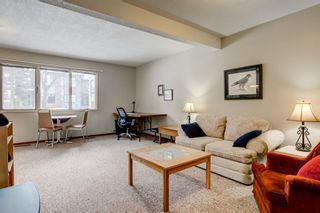 Photo 36: 2108 51 Avenue SW in Calgary: North Glenmore Park Detached for sale : MLS®# A1058307
