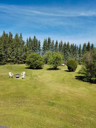 Photo 11: 49461 RGE RD 22: Rural Leduc County House for sale : MLS®# E4247442