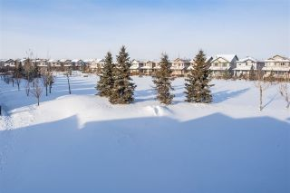 Photo 48: 54 STRAWBERRY Lane: Leduc House for sale : MLS®# E4228569