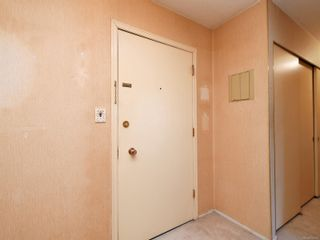 Photo 19: 305 3880 Shelbourne St in : SE Cedar Hill Condo for sale (Saanich East)  : MLS®# 872259
