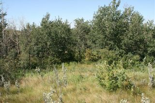 Photo 6: 4 VIEW Place in Rural Stettler No. 6, County of: Rural Stettler County Land for sale : MLS®# A1066068