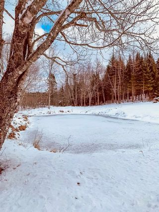 Photo 27: 1248 Conquerall Road in Conquerall Mills: 405-Lunenburg County Residential for sale (South Shore)  : MLS®# 202101420
