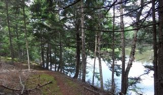 Photo 8: LOT 07-8 Lot07-8 KERRS MILLS Road in Wallace River West: 103-Malagash, Wentworth Vacant Land for sale (Northern Region)  : MLS®# 5161969