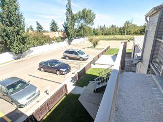 Photo 17: 9367 172 Street in Edmonton: Zone 20 Carriage for sale : MLS®# E4233789