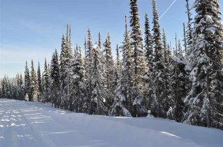 """Photo 15: 210 ALPINE Way in Smithers: Smithers - Rural Land for sale in """"Hudson Bay Mountain Estates"""" (Smithers And Area (Zone 54))  : MLS®# R2453895"""
