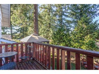 Photo 18: 11851 98A Avenue in Surrey: Royal Heights House for sale (North Surrey)  : MLS®# R2313177