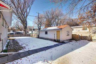 Photo 19: Bungalow for sale north Edmonton - 5020 118 AV NW