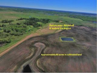 Photo 2: Hwy 28 North of Twp 570: Rural Sturgeon County Rural Land/Vacant Lot for sale : MLS®# E4238709