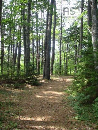 Photo 16: Lot 11 RAFUSE POINT Road in Pleasantville: 405-Lunenburg County Vacant Land for sale (South Shore)  : MLS®# 202122075