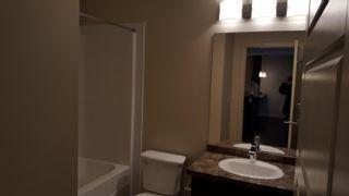 Photo 12: 437 6076 SCHONSEE Way in Edmonton: Zone 28 Condo for sale : MLS®# E4262572