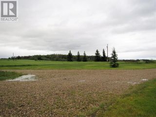 Photo 38: 40050 Township Road 804 Road in Rural Fairview No. 136, M.D. of: House for sale : MLS®# A1121085