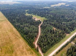 Photo 23: 31339 Rge Rd 55: Rural Mountain View County Land for sale : MLS®# A1136736