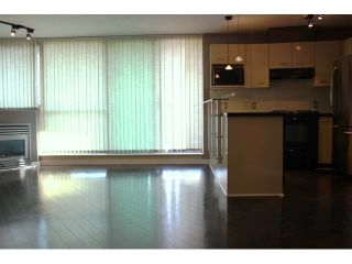 Photo 13: 1102 501 PACIFIC Street in Vancouver: Downtown VW Condo for sale (Vancouver West)  : MLS®# V1042770