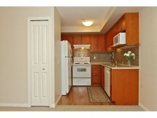 """Photo 9: 301 8880 202ND Street in Langley: Walnut Grove Condo for sale in """"THE RESIDENCES AT VILLAGE SQUARE"""" : MLS®# F1409404"""