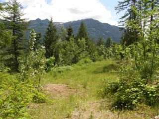 Photo 13: 23685 AMERICAN CREEK Road in Hope: Hope Center Land for sale : MLS®# R2176452