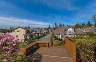 Photo 19: R2056912 - 17- 11442 Best St, Maple Ridge - For Sale