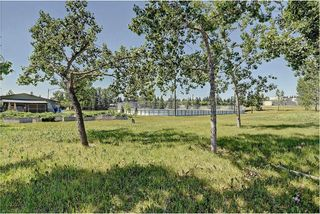 Photo 27: 6203 LEWIS Drive SW in Calgary: Lakeview House for sale : MLS®# C4128668