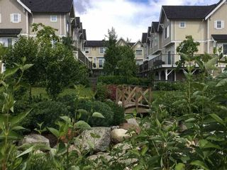 """Photo 24: 69 31032 WESTRIDGE Place in Abbotsford: Abbotsford West Townhouse for sale in """"Harvest"""" : MLS®# R2084069"""