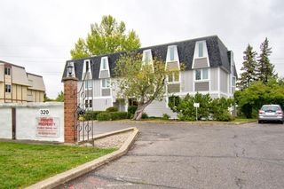 Main Photo: 301 320 Cedar Crescent SW in Calgary: Spruce Cliff Apartment for sale : MLS®# A1150524