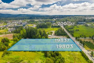 Photo 3: 19837 86 Avenue in Langley: Willoughby Heights House for sale : MLS®# R2531982
