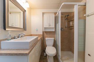 Photo 45: 41 BUTTERFIELD Crescent: St. Albert House for sale : MLS®# E4257627