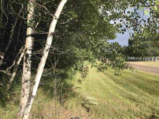 Photo 5: Pinebrook Block 1 Lot 2: Rural Thorhild County Rural Land/Vacant Lot for sale : MLS®# E4171871
