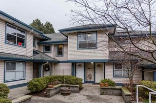 """Photo 1: 19 5664 208 Street in Langley: Langley City Townhouse for sale in """"The Meadows"""" : MLS®# R2244817"""