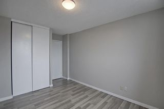 Photo 14: 508 314 14 Street NW in Calgary: Hillhurst Apartment for sale : MLS®# A1117580