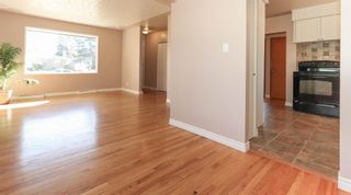 Photo 4: 2427 47 Street SE in Calgary: Forest Lawn Detached for sale : MLS®# A1150911