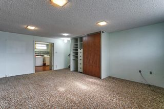 Photo 25: 15 42 Street SW in Calgary: Wildwood Detached for sale : MLS®# A1122775
