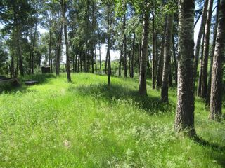 Photo 14: 4137 Township Road  350: Rural Red Deer County Detached for sale : MLS®# A1127298
