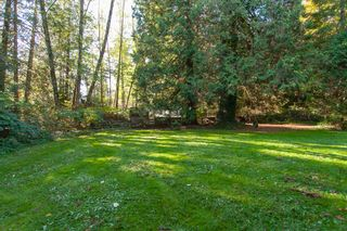 Photo 4: 17342 26 Avenue in Surrey: Grandview Surrey House for sale