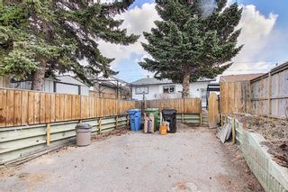 Photo 45: 367 Maitland Crescent NE in Calgary: Marlborough Park Detached for sale : MLS®# A1093291