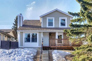 Main Photo: 43 Beddington Way NE in Calgary: Beddington Heights Detached for sale : MLS®# A1076768