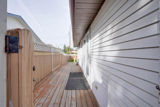 Photo 12: 3307 39 Street SE in Calgary: Dover Detached for sale : MLS®# A1148179