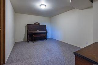 Photo 40: 4241 Buddington Rd in : CV Courtenay South House for sale (Comox Valley)  : MLS®# 857163