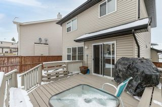 Photo 42: 218 Citadel Estates Heights NW in Calgary: Citadel Detached for sale : MLS®# A1073661