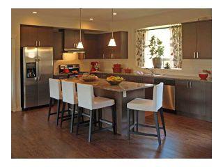 Photo 6: 10725 ERSKINE Street in Maple Ridge: Thornhill House for sale : MLS®# V904386