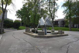 Photo 38: 178 1 Snow Street in Winnipeg: University Heights Condominium for sale (1K)  : MLS®# 202122316