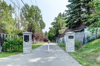 Photo 43: 62 Massey Place SW in Calgary: Mayfair Detached for sale : MLS®# A1132733