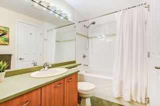 """Photo 9: A315 2099 LOUGHEED Highway in Port Coquitlam: Glenwood PQ Condo for sale in """"SHAUGHNESSY SQUARE"""" : MLS®# R2245121"""