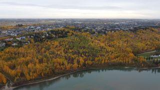 Photo 8: 17303 23 Avenue in Edmonton: Zone 56 Land Commercial for sale : MLS®# E4265907
