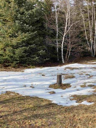 Photo 18: 45916 Cabot Trail in Indian Brook: 209-Victoria County / Baddeck Residential for sale (Cape Breton)  : MLS®# 202102070