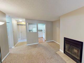 Photo 3: 103 3225 Alder St in : SE Quadra Condo for sale (Saanich East)  : MLS®# 877393