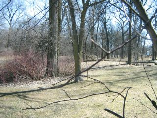 Photo 3: 200 Wildwood A Park in WINNIPEG: Fort Garry / Whyte Ridge / St Norbert Residential for sale (South Winnipeg)  : MLS®# 1106330