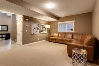 Photo 28: 219 Springbluff Heights SW in Calgary: Springbank Hill Detached for sale : MLS®# A1047010